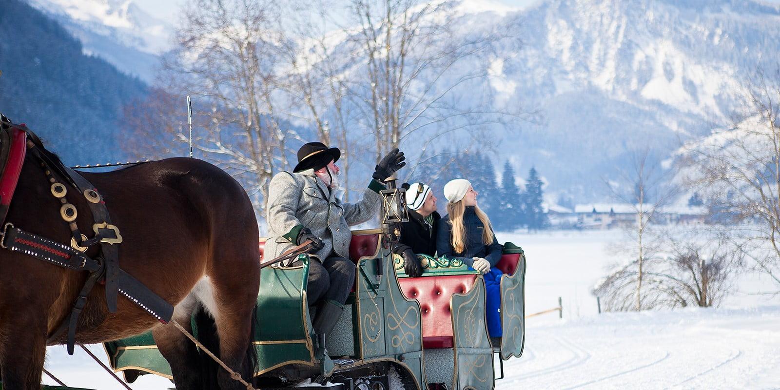 Wald im Pinzgau paard en wagen