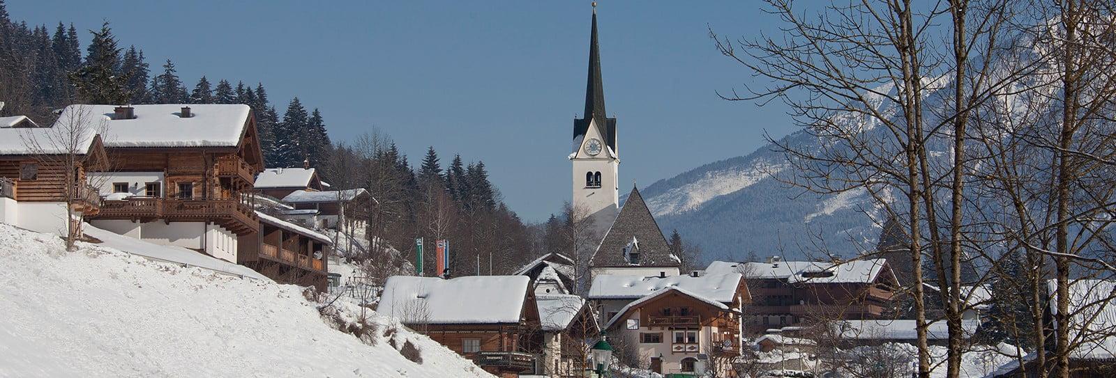 Wald im Pinzgau panorama